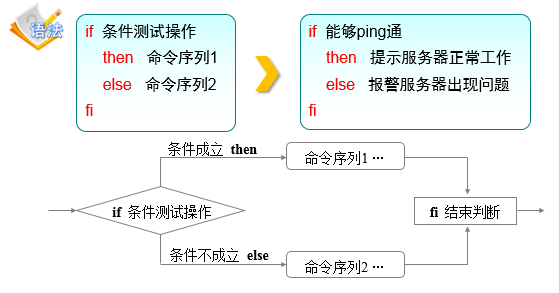 双分支结构