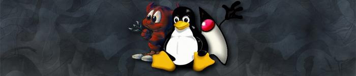 ESR观点:Linux能够成功的4大原因(短文)