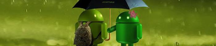 Google回应安卓新漏洞:别怕,有我呢。