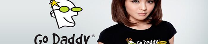 最大域名注册商GoDaddy正式提供中文服务