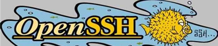 OpenSSH 7.2将支持 SHA-256/512 的 RSA 签名