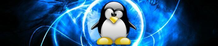 Linux已成为世界最大软件开发项目