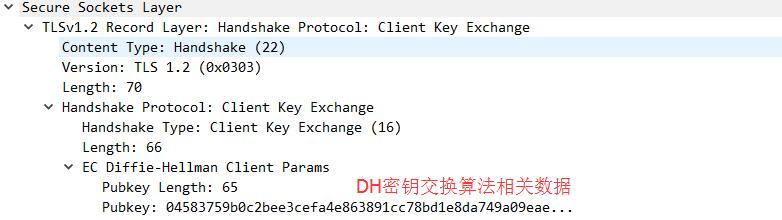 client-dh-data