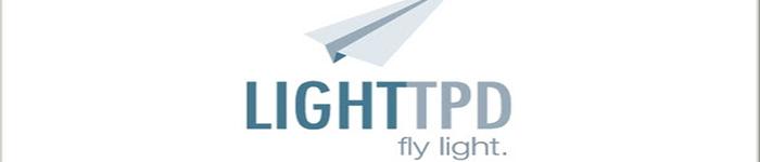 在 Linux 中安装 Lighttpd Web 服务器