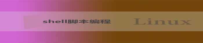 shell_file_repair_logo