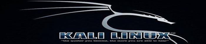 全新 Kali Linux 系统安装指南
