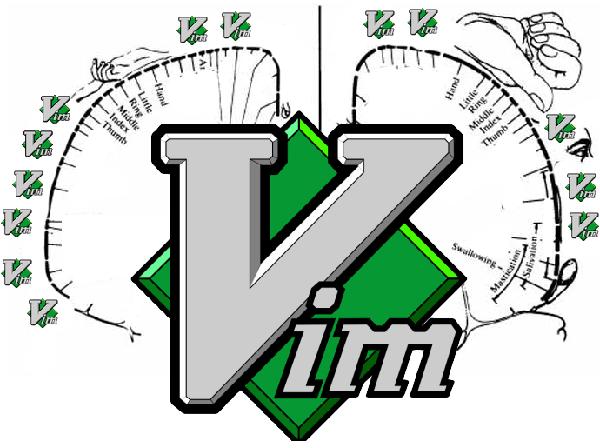 不可想象!开源工具Vim使用者大脑的形态