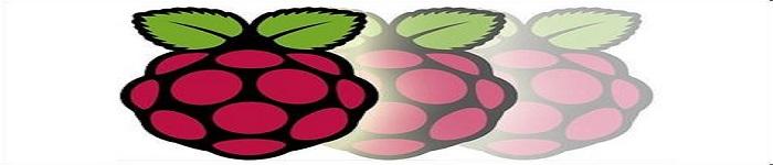 怎么使用树莓派和 iPad Pro 备份图片