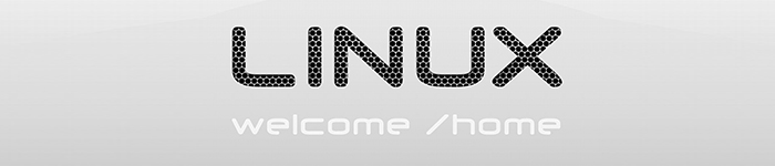 Linux 时代的来临