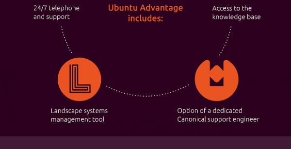 [信息图]Canonical详细解释付费服务Ubuntu Advantage的优势