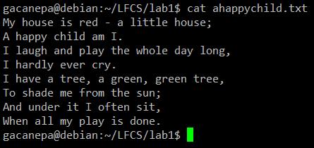 preparation-for-lfcs02