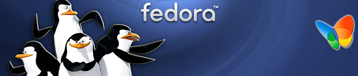 关于Fedora 24 的 `dnf update`这个小故障