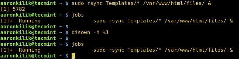 如何在后台运行 Linux 命令并且将进程脱离终端