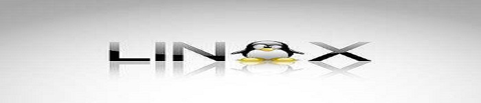2017 年最值得期待的 5 个新 Linux 发行版