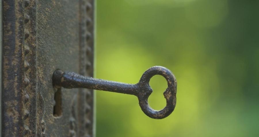 在 Linux 中修改 MySQL 或 MariaDB 的 Root 密码