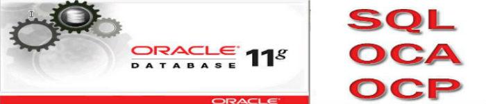 在 Cenntos6.8 下安装 Oracle11g