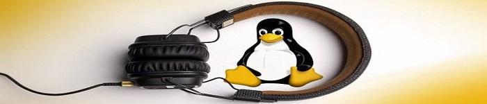 推荐5 款好用的 Linux 音乐播放器