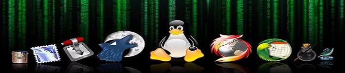 鸟哥马哥共叙Linux发展