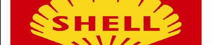 Shell中4个关键的网络命令