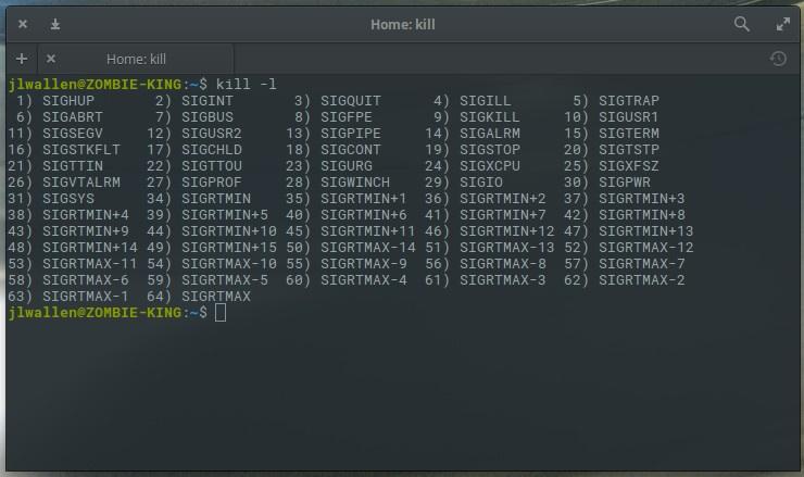 怎样在 Linux 命令行下杀死一个进程
