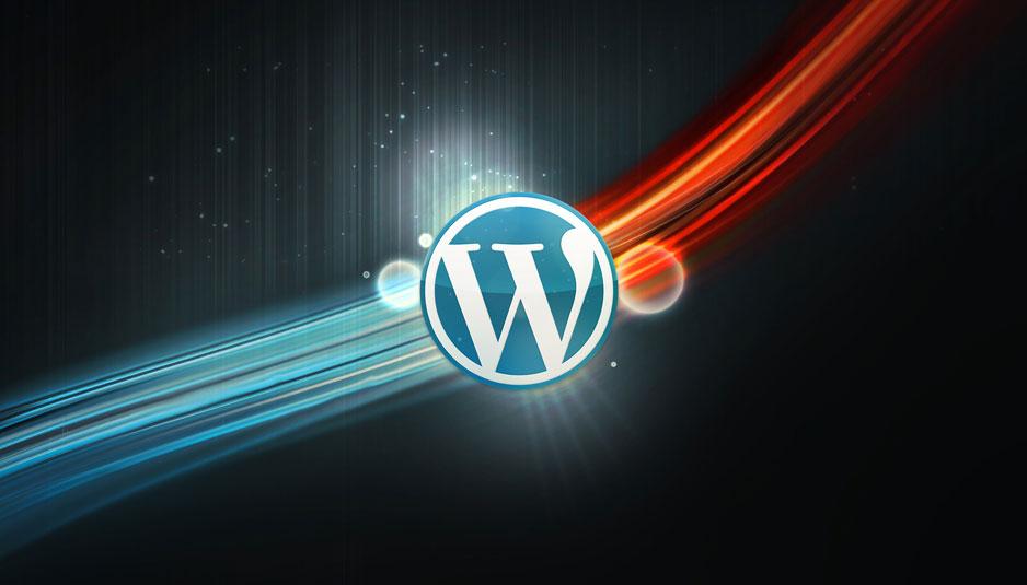 WPSeku:一个找出 WordPress 安全问题的漏洞扫描器