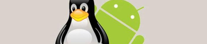Linux与安卓安全对抗