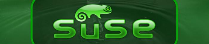 SUSE Linux和Fedora等Linux系统和Win10的融合