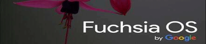 Fuchsia 对 于Android的意义