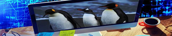Linux之sed命令详解