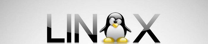 原来Linux这么牛:称霸全球超级电脑 500 强!