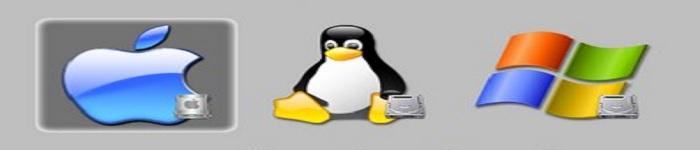 在 Linux/Unix/Mac 下清除 DNS 查询缓存