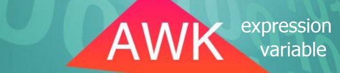 awk 变量、数值表达式以及赋值运算符如何使用