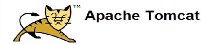 Apache Tomcat 9.0.10 发布,添加多项新功能