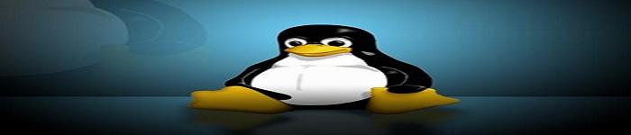 麒麟版Linux怎么在笔记本上安装