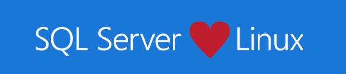 在 Ubuntu 上安装 SQL Server
