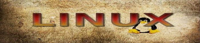 颜值即正义,Linux 桌面个性化工具推荐