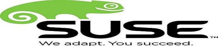 日益强大的Linux合作伙伴