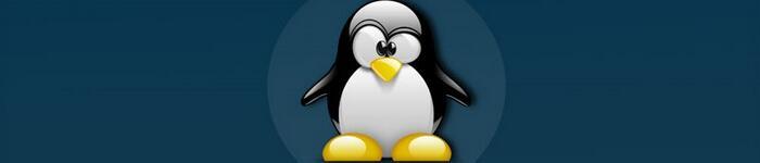 Linux 成功运作的秘密