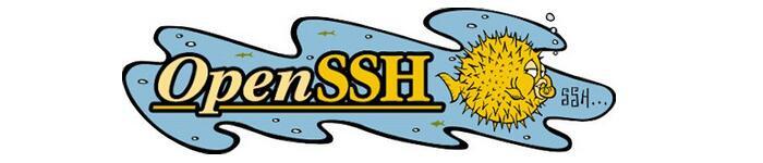 OpenSSH 高级运用两则