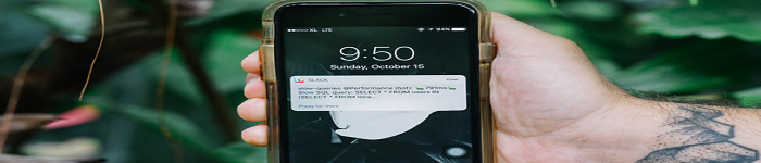 Slack监视中的sql查询