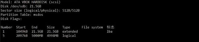 如何在Linux系统上添加新的磁盘