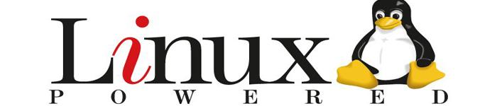大神教你怎么使用Linux 内核诊断工具 dtrace4linux