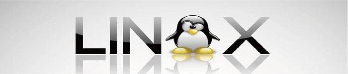 大神教你如何在 Linux 中移除符号链接