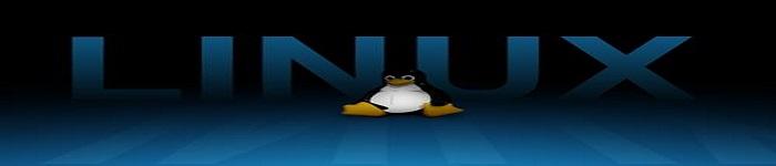 Linux下的文件I/O编程