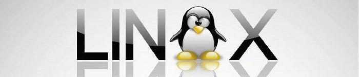 Linux下如何使用五笔和拼音,区位输入法