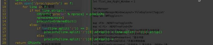 Debian 中的 vim Bug