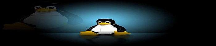 CentOS6.7部署CSVN服务器的方法