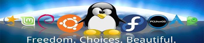 2018年Linux发行版颜值排行榜发布啦!