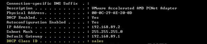 DHCP常用配置文件解析