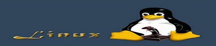 Linux 4.16 RC1公测开放并修复漏洞